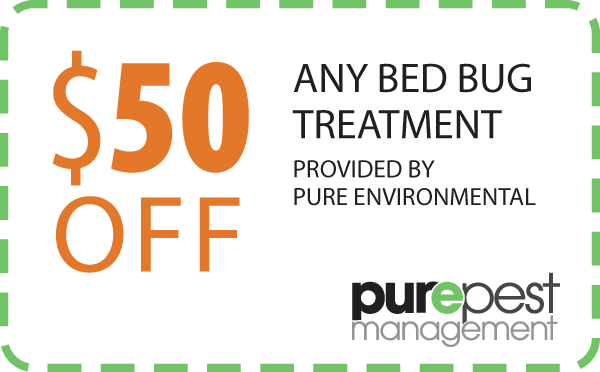 coupon - bed bug treatment